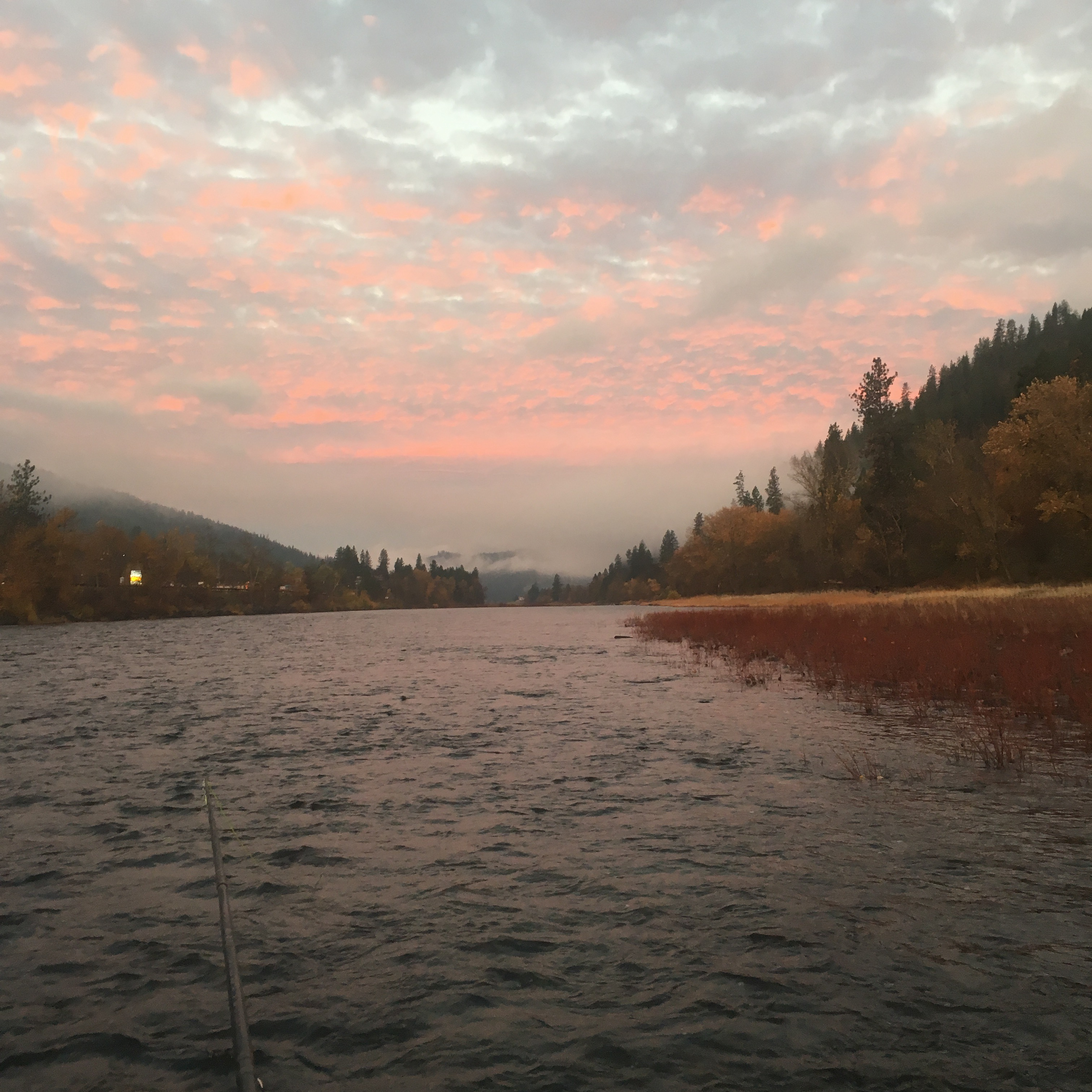 Swinging  - The Clearwater River - Orifino Id.